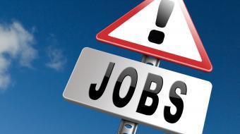 Ugens job: HOFOR, Ørsted og flere store firmaer jagter fagfolk